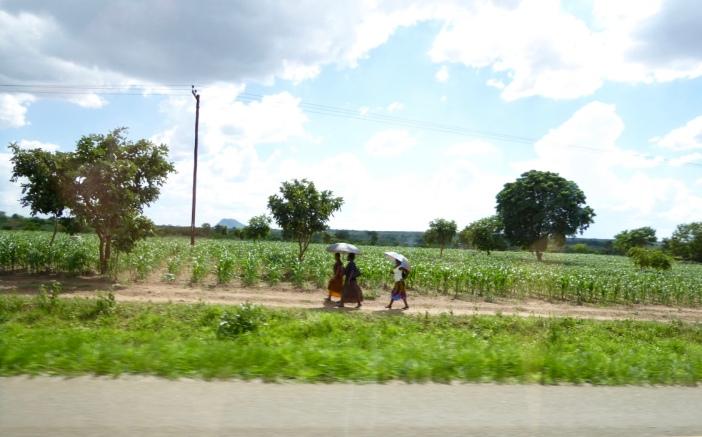 2016.01.08 05 Way to Zomba