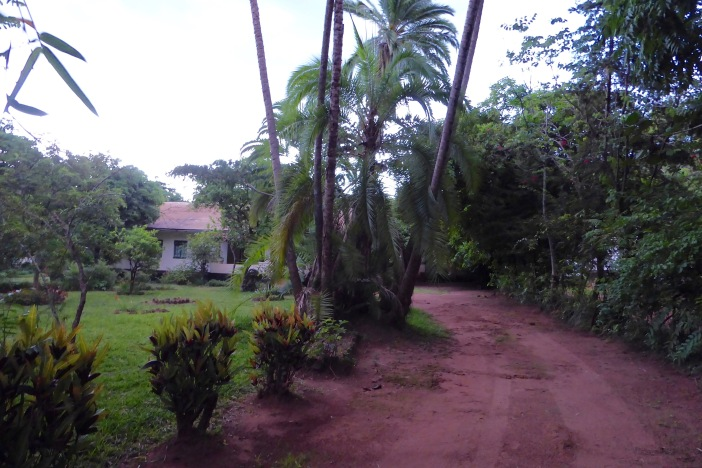 2016.01.08.09 Guest House3 In Zomba