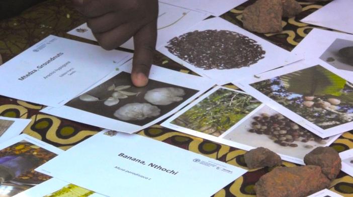 Nyasa Table Cards