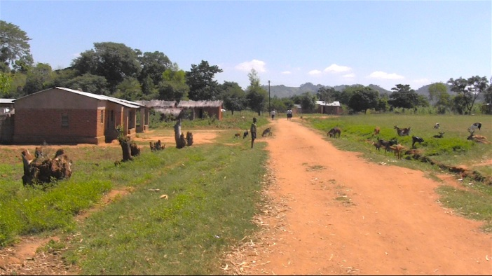 Road by School with Goats.jpg